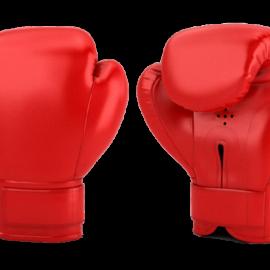 Boxing Gloves for Men & Women, Boxing Training Gloves,