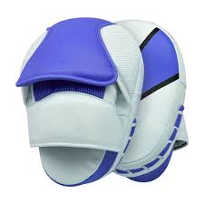 Boxing Curved Focus Punching Mitts